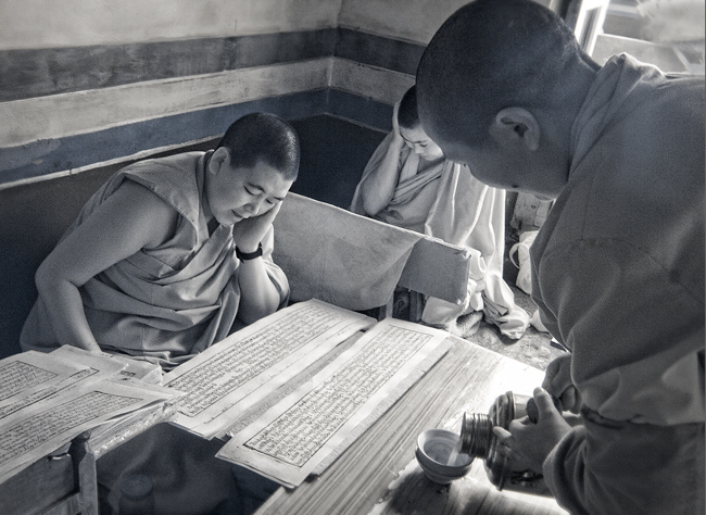 Buddhist Nuns Ladakh